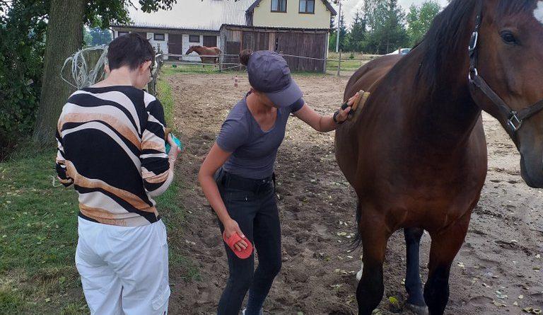 Hipoterapia w stadninie koni w Szarłacie